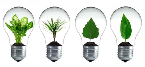 Internet und Nachhaltigkeit